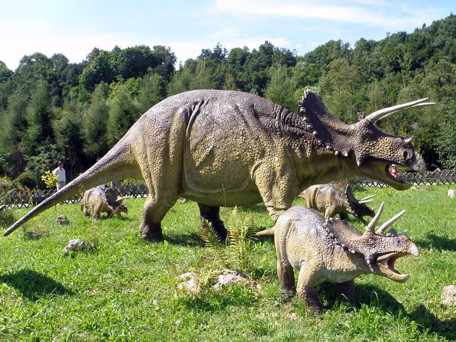 Triceratops-homlok%2Bszarv%2B33%2Bezer%2