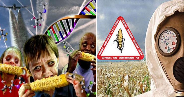 A GMO növények és doppingolt tehenek: a géntechnológia gyilkol és pusztít!