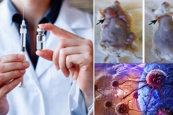 rakgyilkos-vakcina-585x390.jpg