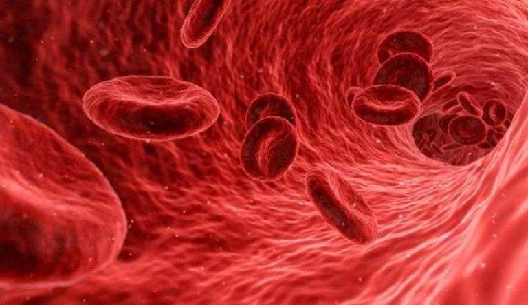 Emberi vér - ám a kutatók már a robotvért is megalkották